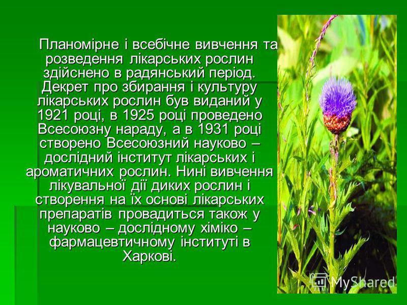 Планомірне і всебічне вивчення та розведення лікарських рослин здійснено в радянський період. Декрет про збирання і культуру лікарських рослин був виданий у 1921 році, в 1925 році проведено Всесоюзну нараду, а в 1931 році створено Всесоюзний науково