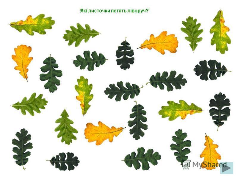 Які листочки летять вверх?