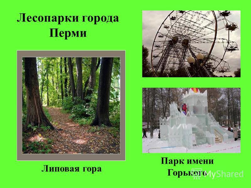Парк имени Горького Лесопарки города Перми Липовая гора