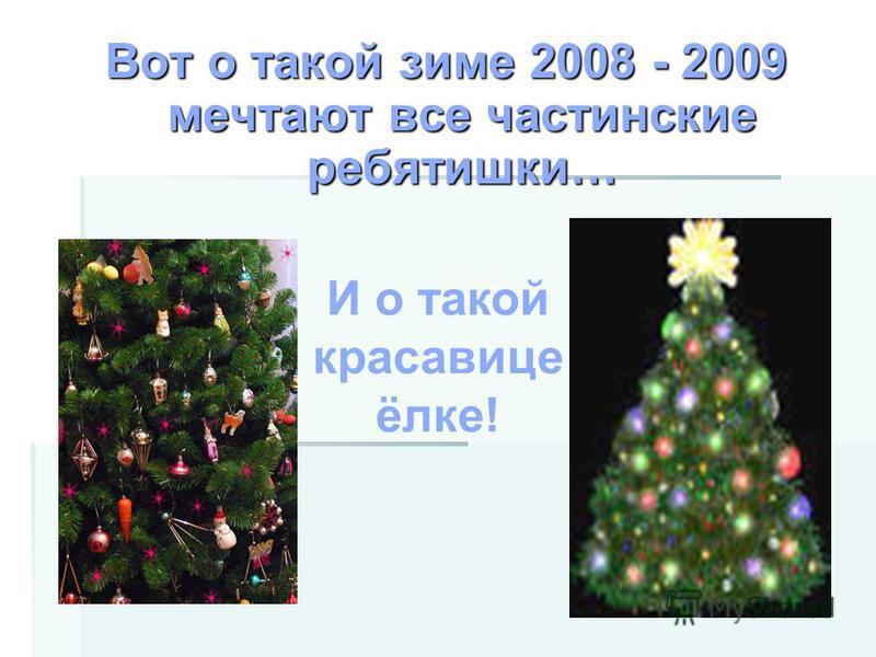 Вот о такой зиме 2008 - 2009 мечтают все частинские ребятишки… И о такой красавице ёлке!