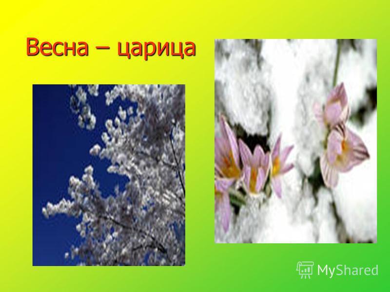 Весна – царица