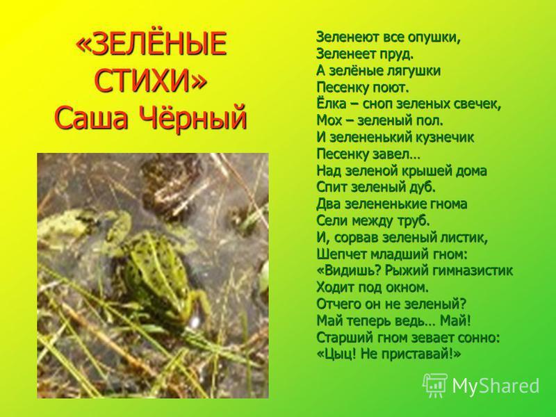 «ЗЕЛЁНЫЕ СТИХИ» Саша Чёрный Зеленеют все опушки, Зеленеет пруд. А зелёные лягушки Песенку поют. Ёлка – сноп зеленых свечек, Мох – зеленый пол. И зелененький кузнечик Песенку завел… Над зеленой крышей дома Спит зеленый дуб. Два зелененькие гнома Сели