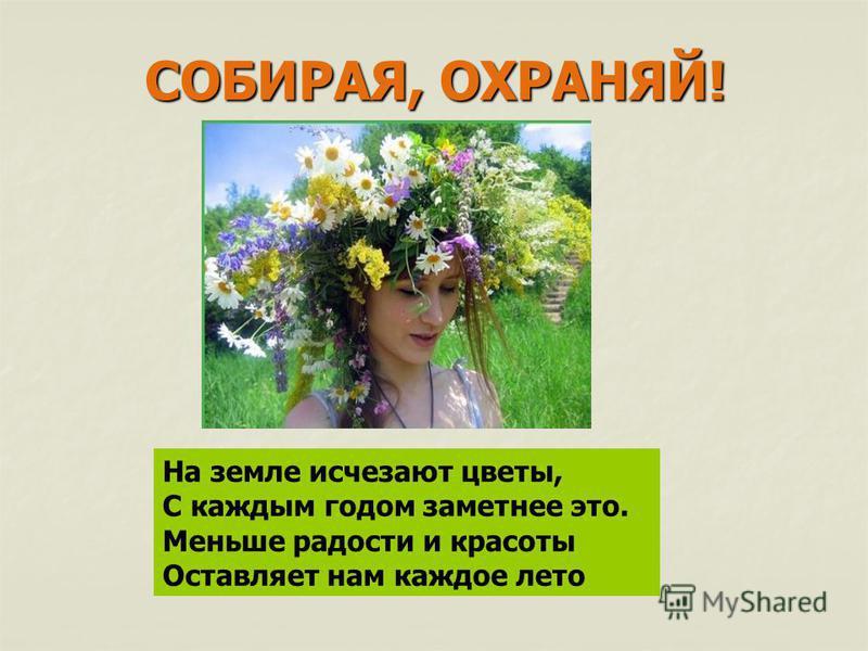 На земле исчезают цветы, С каждым годом заметнее это. Меньше радости и красоты Оставляет нам каждое лето