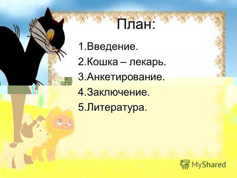 План: 1.Введение. 2. Кошка – лекарь. 3.Анкетирование. 4.Заключение. 5.Литература.