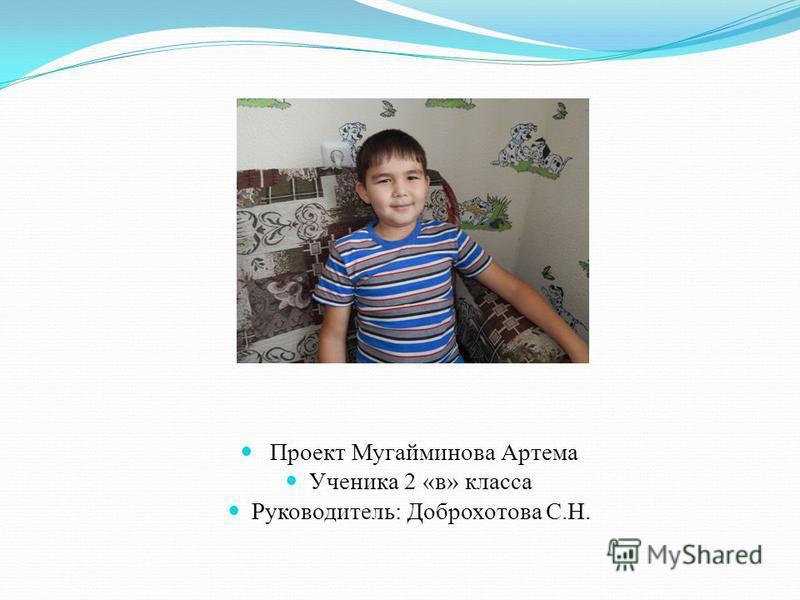 Проект Мугайминова Артема Ученика 2 «в» класса Руководитель: Доброхотова С.Н.