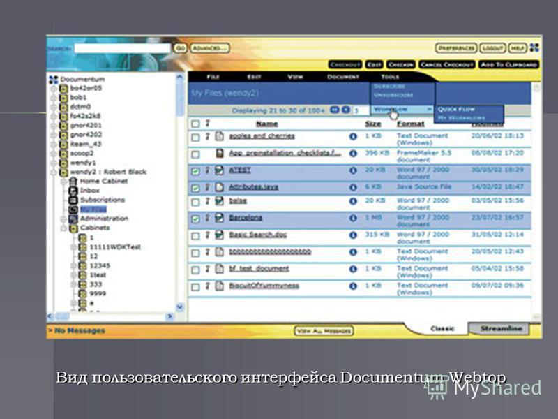 Вид пользовательского интерфейса Documentum Webtop