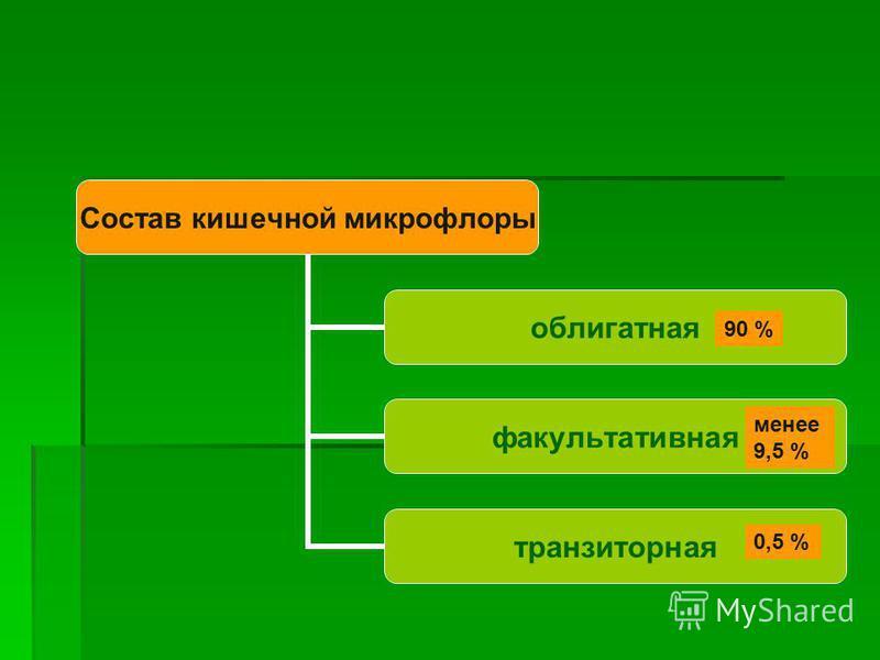 Состав кишечной микрофлоры облигатная факультативная транзиторная 90 % менее 9,5 % 0,5 %