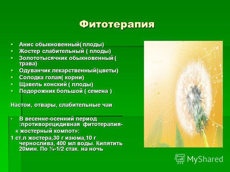 Фитотерапия Анис обыкновенный( плоды) Анис обыкновенный( плоды) Жостер слабительный ( плоды) Жостер слабительный ( плоды) Золототысячник обыкновенный ( трава) Золототысячник обыкновенный ( трава) Одуванчик лекарственный(цветы) Одуванчик лекарственный