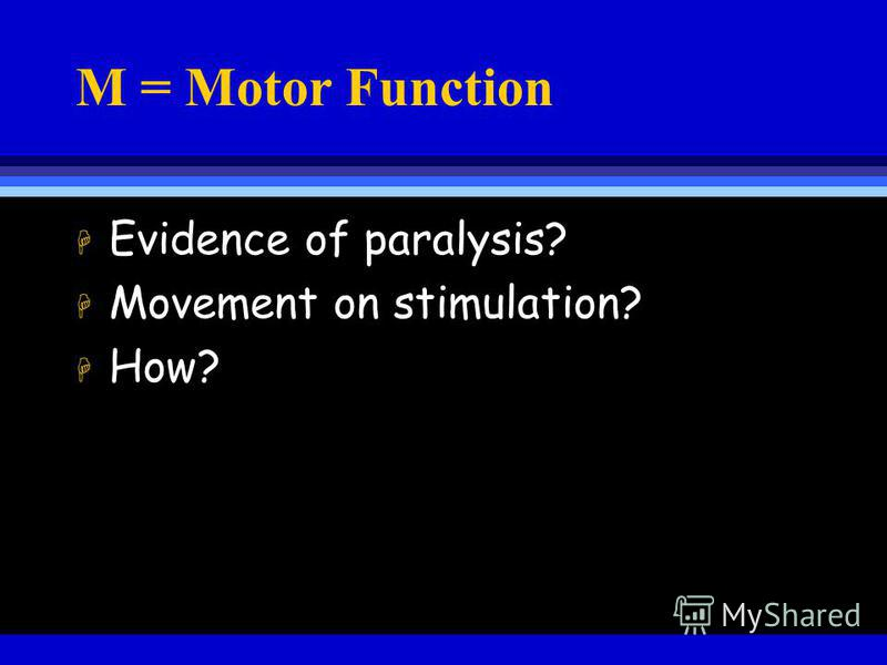 M = Motor Function H Evidence of paralysis? H Movement on stimulation? H How?