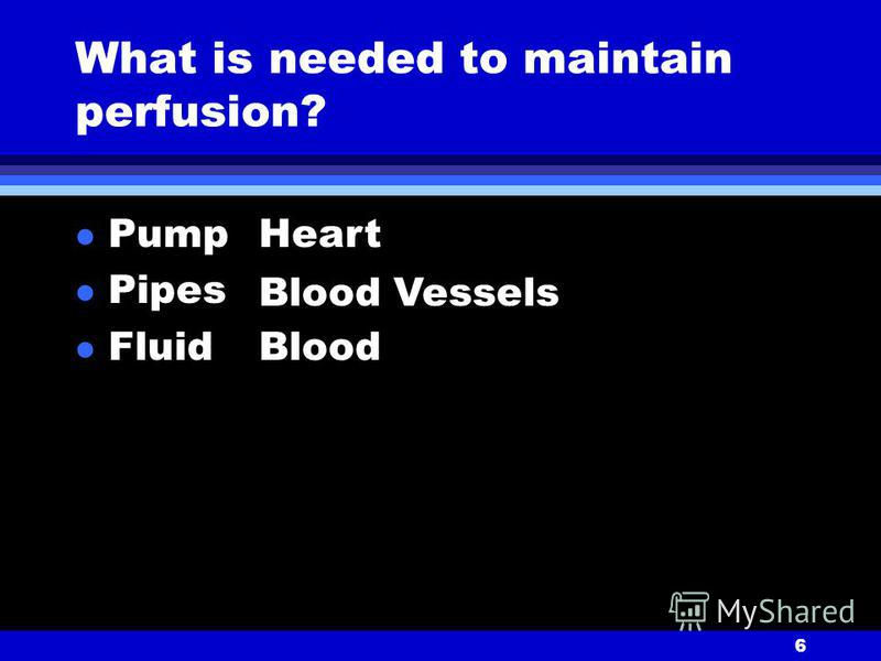 6 What is needed to maintain perfusion? l Pump l Pipes l Fluid Heart Blood Vessels Blood