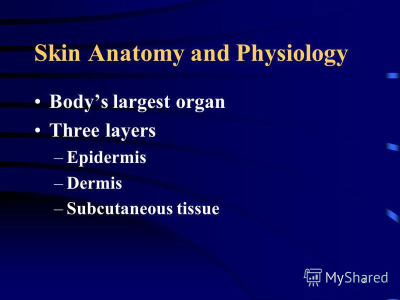 2 Skin Anatomy and Physiology Bodys largest organ Three layers –Epidermis –Dermis –Subcutaneous tissue