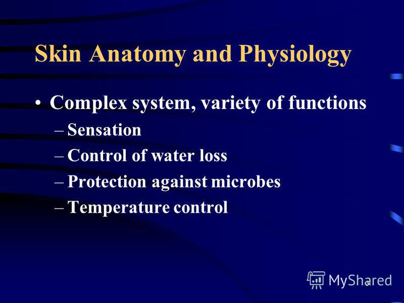 3 Skin Anatomy and Physiology Complex system, variety of functions –Sensation –Control of water loss –Protection against microbes –Temperature control