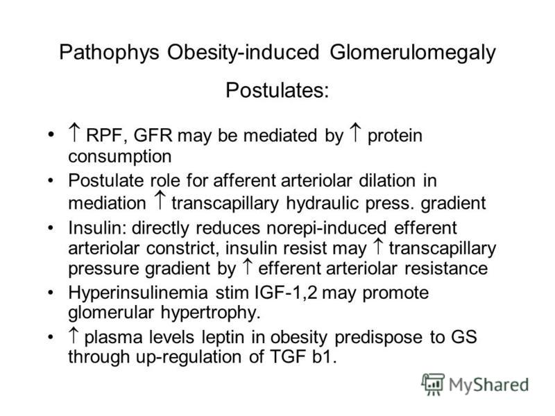Pathophys Obesity-induced Glomerulomegaly Postulates: RPF, GFR may be mediated by protein consumption Postulate role for afferent arteriolar dilation in mediation transcapillary hydraulic press. gradient Insulin: directly reduces norepi-induced effer