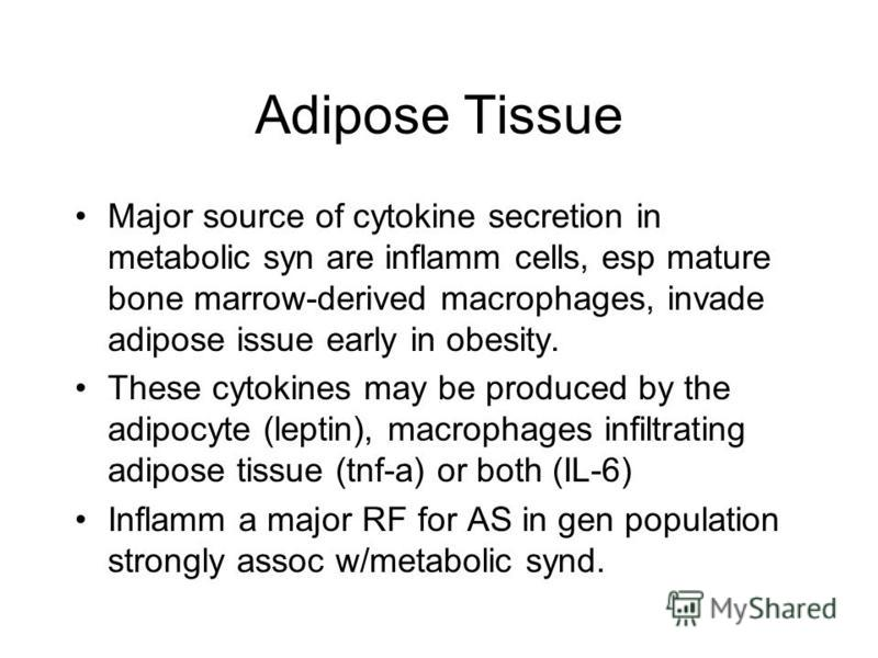 Adipose Tissue Major source of cytokine secretion in metabolic syn are inflamm cells, esp mature bone marrow-derived macrophages, invade adipose issue early in obesity. These cytokines may be produced by the adipocyte (leptin), macrophages infiltrati