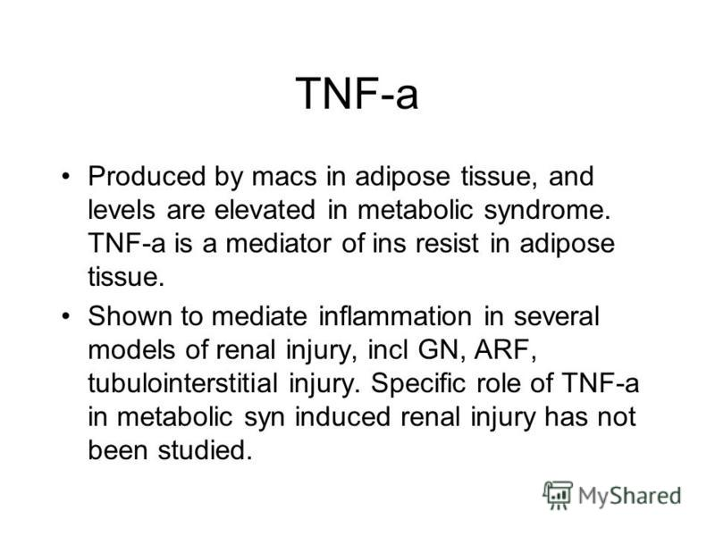 TNF-a Produced by macs in adipose tissue, and levels are elevated in metabolic syndrome. TNF-a is a mediator of ins resist in adipose tissue. Shown to mediate inflammation in several models of renal injury, incl GN, ARF, tubulointerstitial injury. Sp