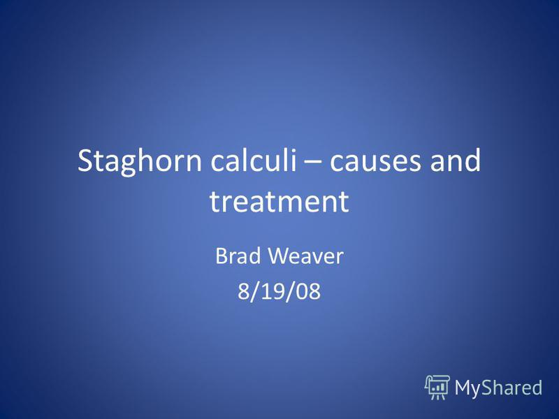 Staghorn calculi – causes and treatment Brad Weaver 8/19/08