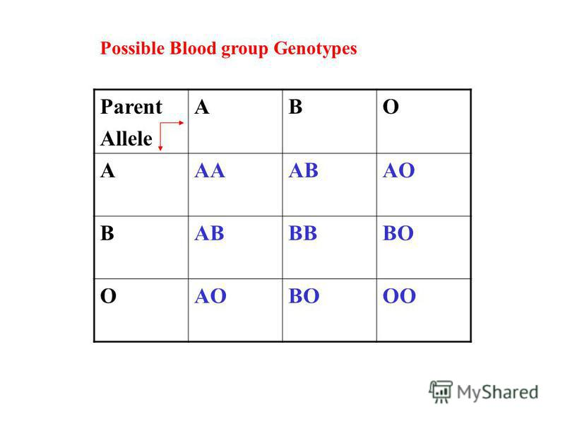 Parent Allele ABO AAAABAO BABBBBO OAOBOOO Possible Blood group Genotypes