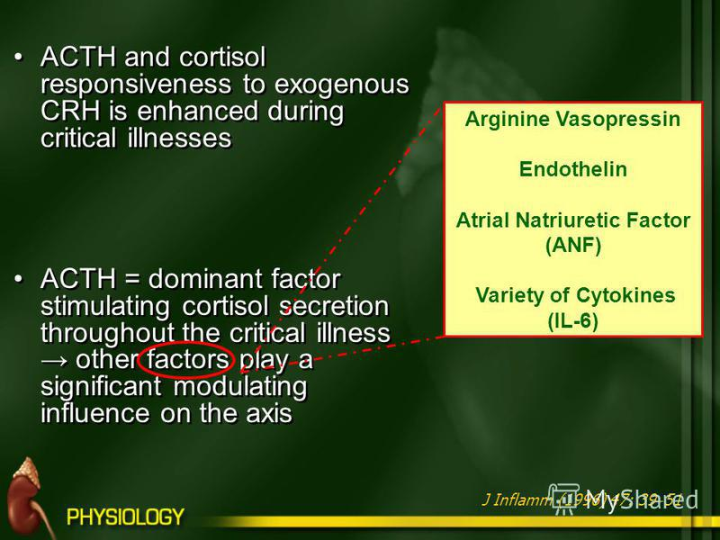 ACTH and cortisol responsiveness to exogenous CRH is enhanced during critical illnesses ACTH = dominant factor stimulating cortisol secretion throughout the critical illness other factors play a significant modulating influence on the axis ACTH and c