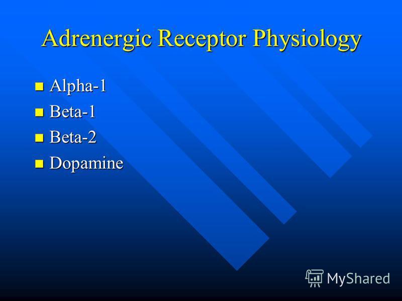 Adrenergic Receptor Physiology Alpha-1 Alpha-1 Beta-1 Beta-1 Beta-2 Beta-2 Dopamine Dopamine