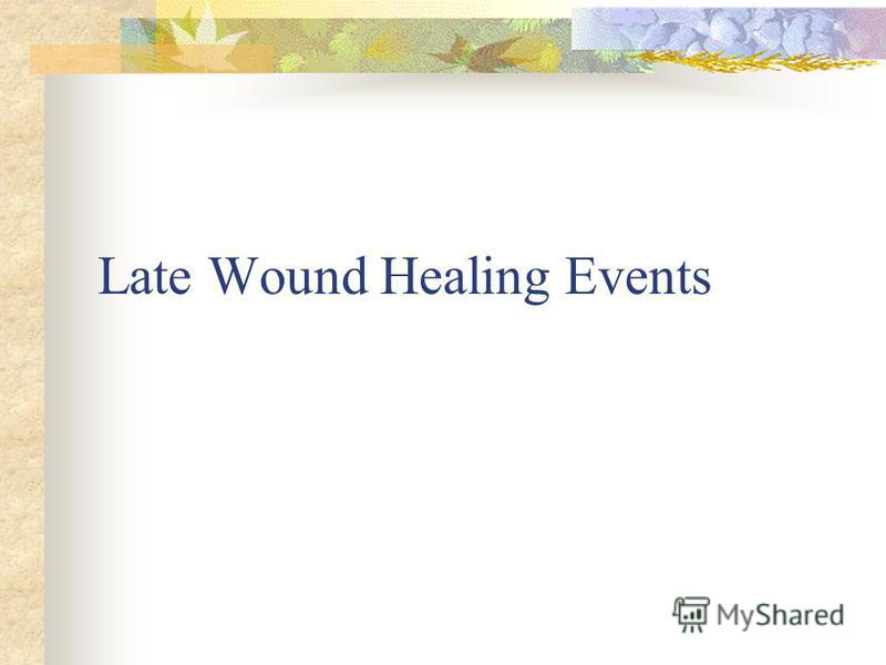 Late Wound Healing Events