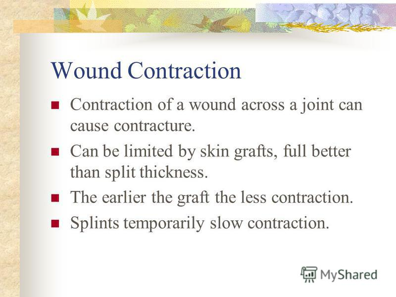 Wound Contraction Contraction of a wound across a joint can cause contracture. Can be limited by skin grafts, full better than split thickness. The earlier the graft the less contraction. Splints temporarily slow contraction.