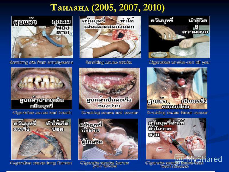 Таиланд (2005, 2007, 2010)