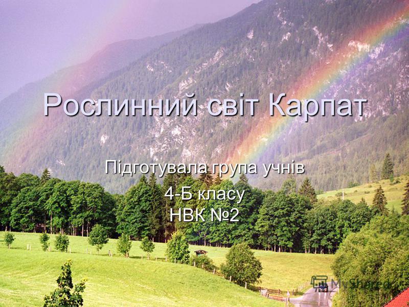Рослинний світ Карпат Підготувала група учнів 4-Б класу НВК 2