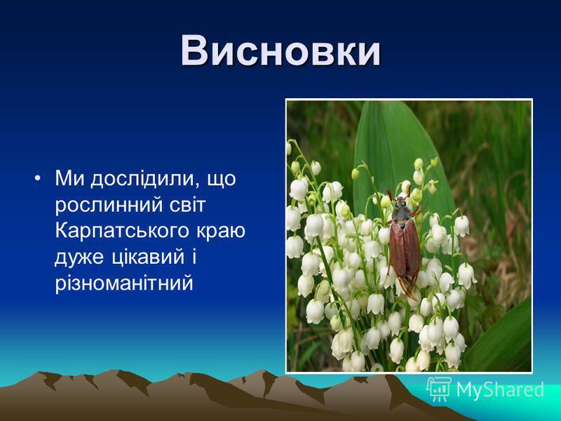 Висновки Ми дослідили, що рослинний світ Карпатського краю дуже цікавий і різноманітний