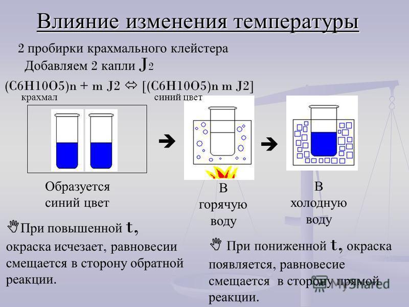 В горячую воду Образуется синий цвет В холодную воду Влияние изменения температуры 2 пробирки крахмального клейстера Добавляем 2 капли J 2 (C6H10O5)n + m J2 [(C6H10O5)n m J2] крахмал синий цвет При повышенной t, окраска исчезает, р равновесие смещает