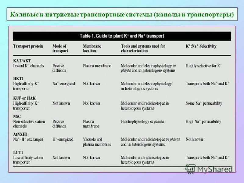 Каливые и натриевые транспортные системы (каналы и транспортеры)