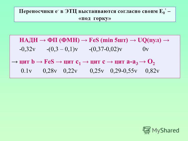 Переносчики е - в ЭТЦ выстаиваются согласно своим Е 0 – «под горку» НАДН ФП (ФМН) FeS (min 5 шт) UQ(пул) -0,32v -(0,3 – 0,1)v -(0,37-0,02)v 0v цит b FeS цит с 1 цит с цит а-а 3 О 2 0.1v 0,28v 0,22v 0,25v 0,29-0,55v 0,82v