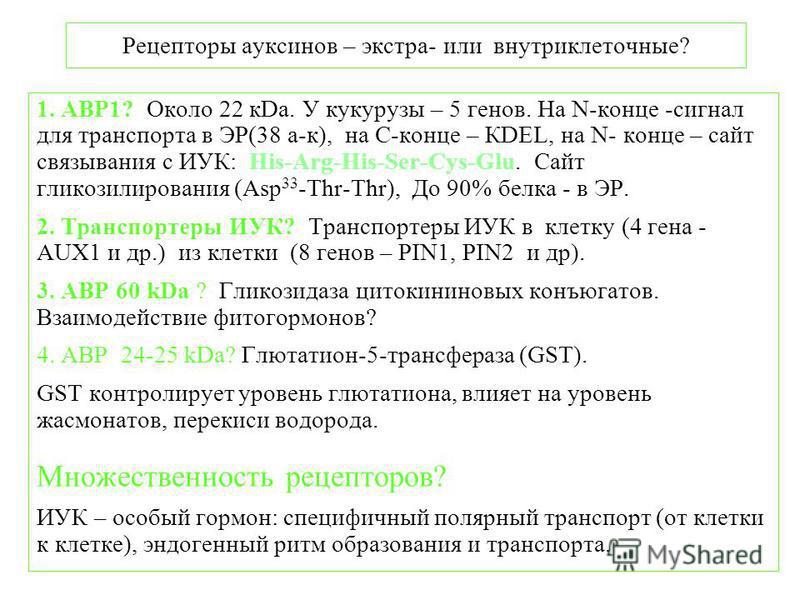 Рецепторы ауксинов – экстра- или внутриклеточные? 1. ABP1? Около 22 кDa. У кукурузы – 5 генов. На N-конце -сигнал для транспорта в ЭР(38 а-к), на С-конце – КDEL, на N- конце – сайт связывания с ИУК: His-Arg-His-Ser-Cys-Glu. Сайт гликозилирования (Asp