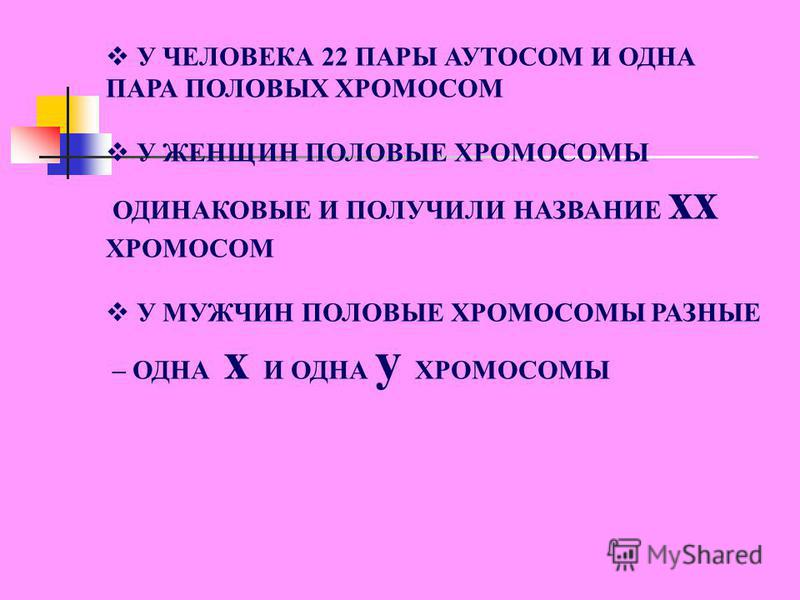 Слайд 4
