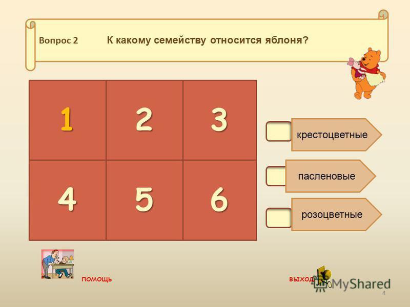 В2. крестоцветные пасленовые розоцветные 23 456 Вопрос 2 К какому семейству относится яблоня? 1 4 помощь выход