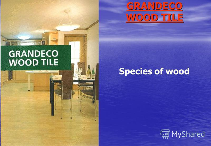 GRANDECO WOOD TILE Species of wood
