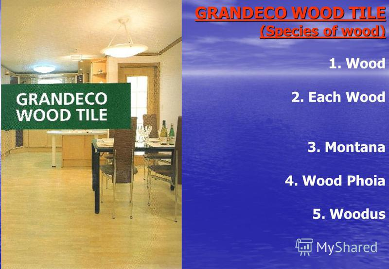 GRANDECO WOOD TILE (Species of wood) 1. Wood 2. Each Wood 3. Montana 4. Wood Phoia 5. Woodus