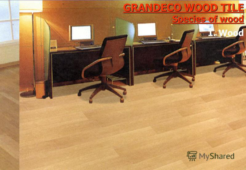 GRANDECO WOOD TILE Species of wood 1. Wood