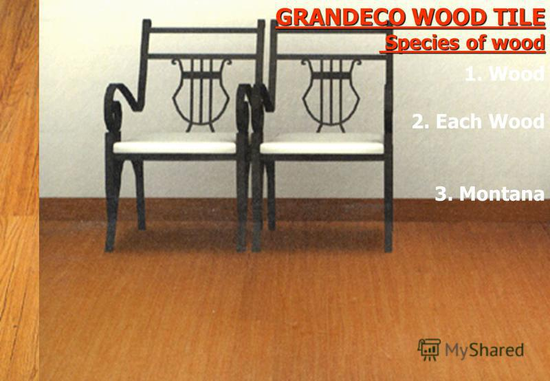 GRANDECO WOOD TILE Species of wood 3. Montana 1. Wood 2. Each Wood