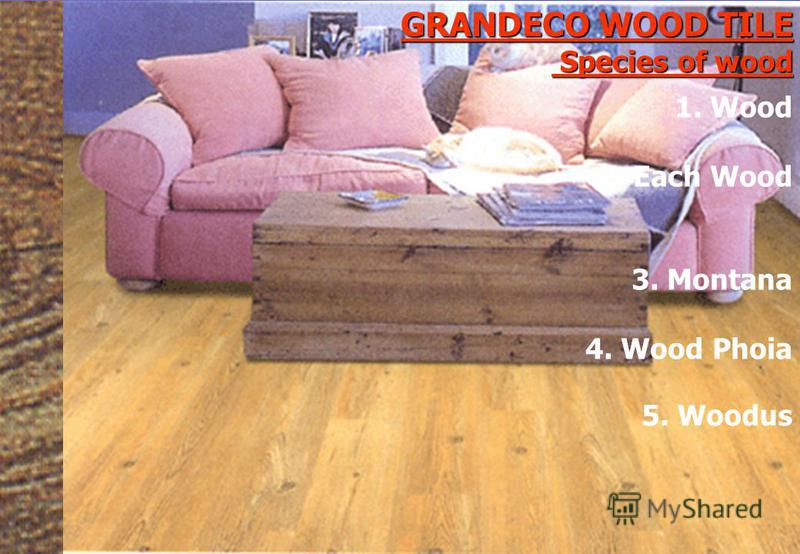 GRANDECO WOOD TILE Species of wood 5. Woodus 1. Wood 2. Each Wood 3. Montana 4. Wood Phoia