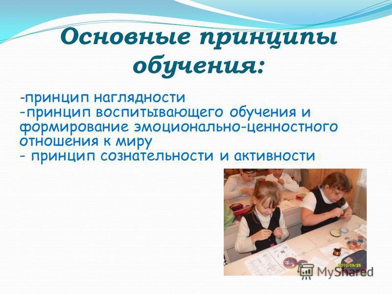 Основные принципы обучения: - принцип наглядности -принцип воспитывающего обучения и формирование эмоционально-ценностного отношения к миру - принцип сознательности и активности