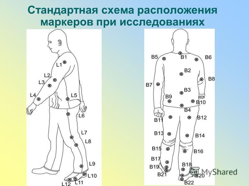 Стандартная схема расположения маркеров при исследованиях