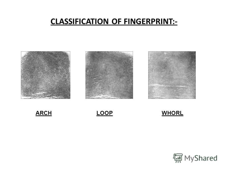 CLASSIFICATION OF FINGERPRINT:- ARCH LOOP WHORL