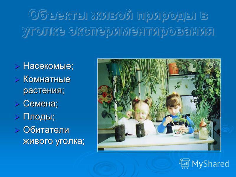 Насекомые; Насекомые; Комнатные растения; Комнатные растения; Семена; Семена; Плоды; Плоды; Обитатели живого уголка; Обитатели живого уголка;