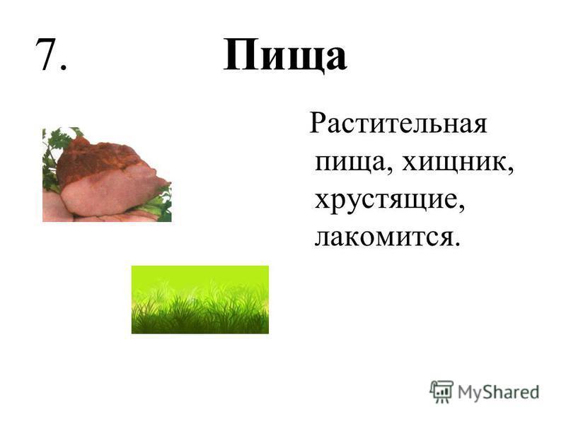 7. Пища Растительная пища, хищник, хрустящие, лакомится.