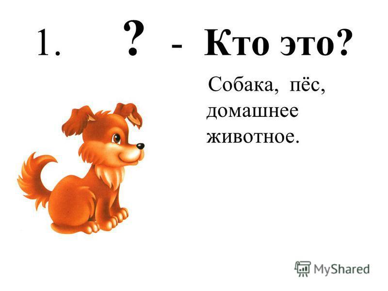 1. ? - Кто это? Собака, пёс, домашнее животное.