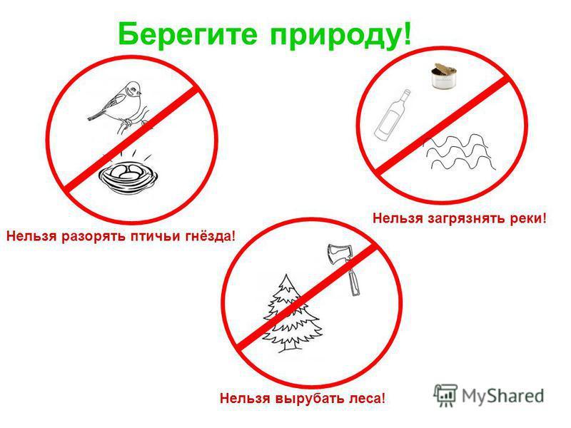 Берегите природу! Нельзя разорять птичьи гнёзда! Нельзя загрязнять реки! Нельзя вырубать леса!