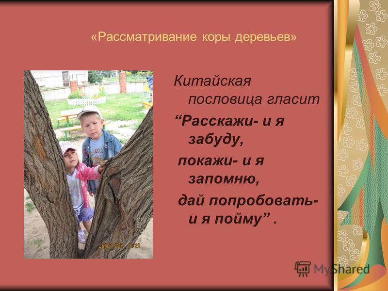 «Рассматривание коры деревьев» Китайская пословица гласит Расскажи- и я забуду, покажи- и я запомню, дай попробовать- и я пойму.