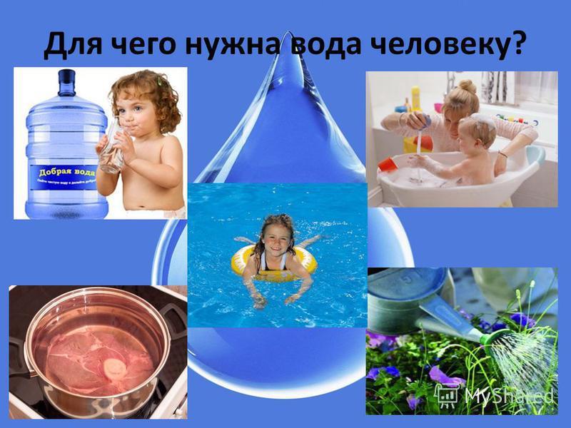 Для чего нужна вода человеку?