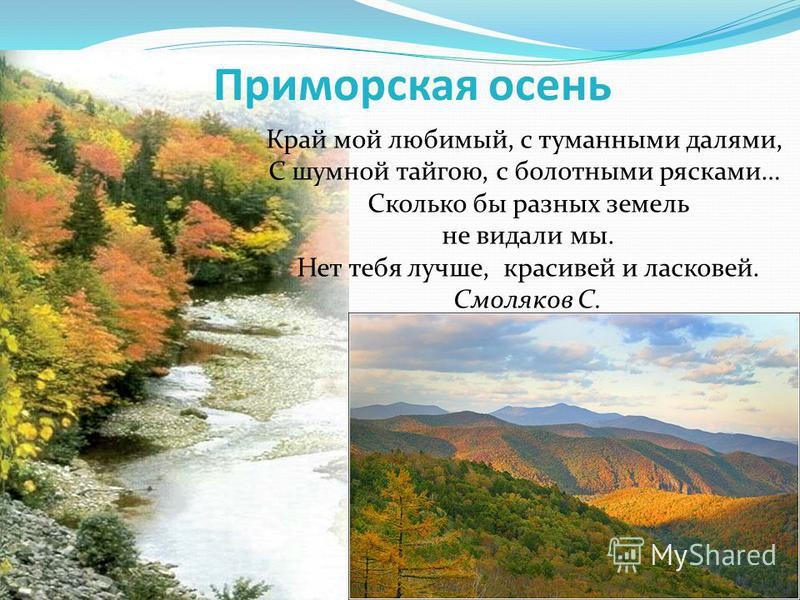 Приморская осень Край мой любимый, с туманными далями, С шумной тайгою, с болотными рясками… Сколько бы разных земель не видали мы. Нет тебя лучше, красивей и ласковей. Смоляков С.