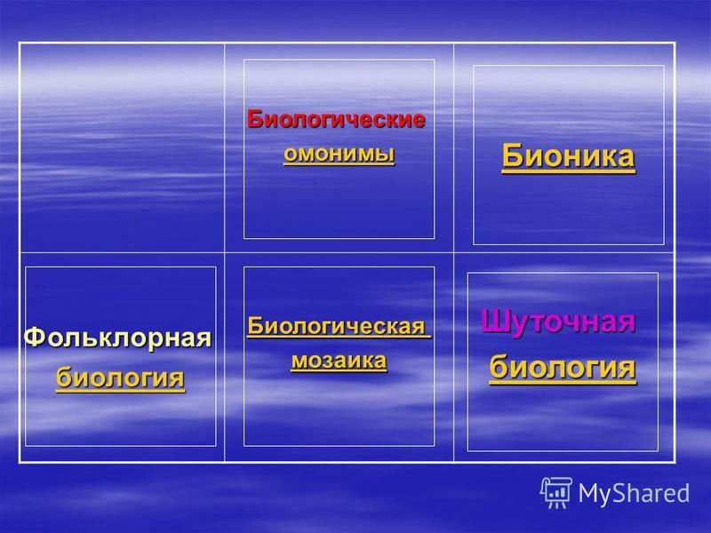 Биологические омонимы Бионика Биологическая мозаика Шуточная биология Фольклорная